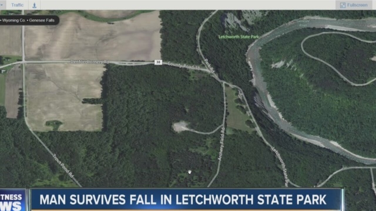 Man unharmed after 60-foot fall in Letchworth